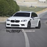 F10 BMW M5 by Hamann and Wheels Boutique (8)