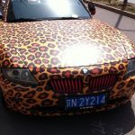 E85 BMW Z4