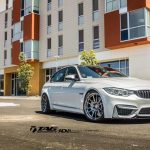 F80 BMW M3 by TAG Motorsports (11)