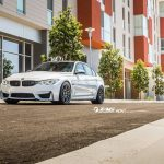 F80 BMW M3 by TAG Motorsports (7)