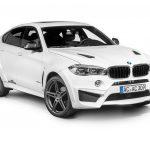 BMW X6 Falcon by AC Schnitzer  (10)