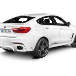 BMW X6 Falcon by AC Schnitzer  (13)