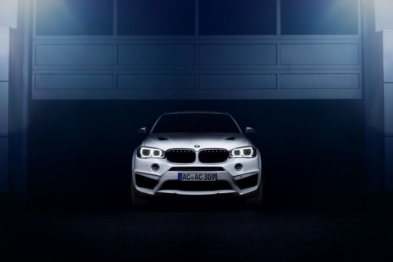 BMW X6 Falcon by AC Schnitzer  (18)