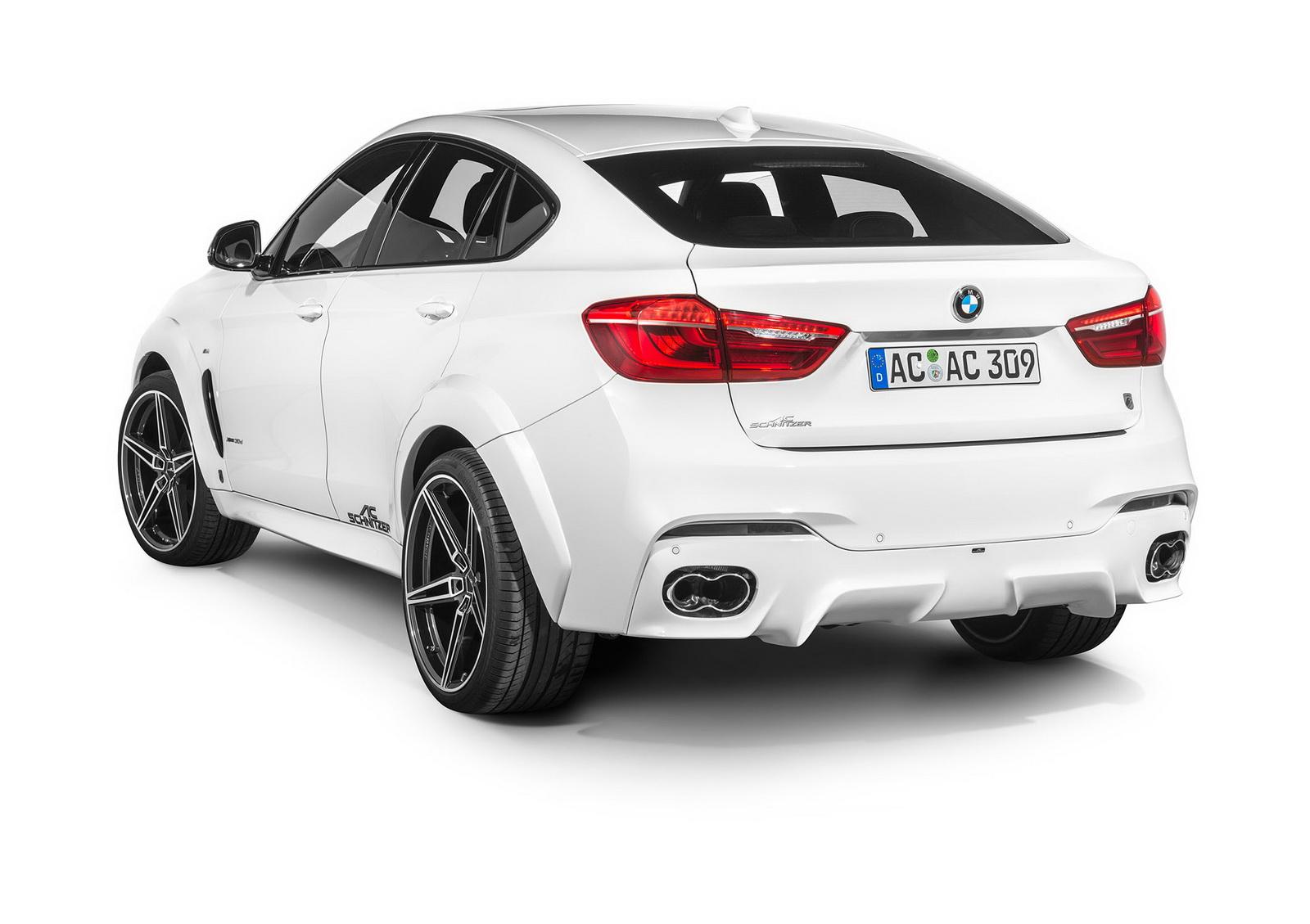 BMW X6 Falcon by AC Schnitzer  (19)