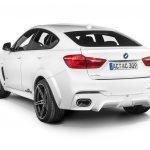 BMW X6 Falcon by AC Schnitzer  (27)