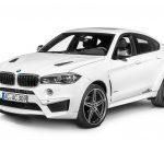 BMW X6 Falcon by AC Schnitzer  (36)