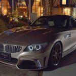 BMW Z4 by Rowen  (1)