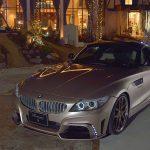 BMW Z4 by Rowen  (4)