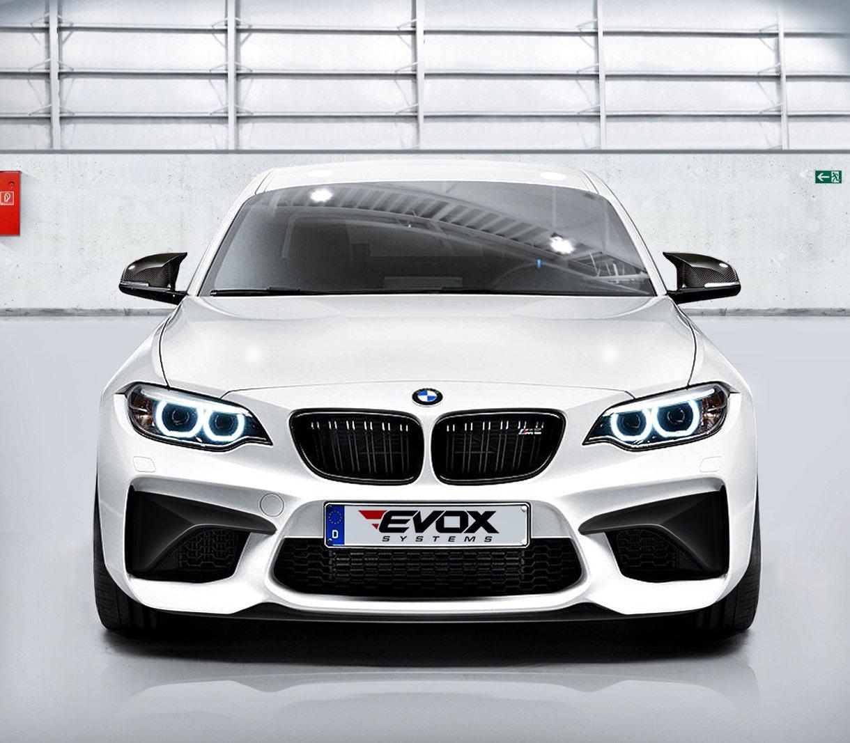 2016 BMW M2 EVOX by Alpha N-Performance  (3)