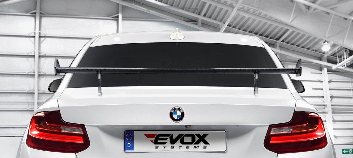 2016 BMW M2 EVOX by Alpha N-Performance  (4)