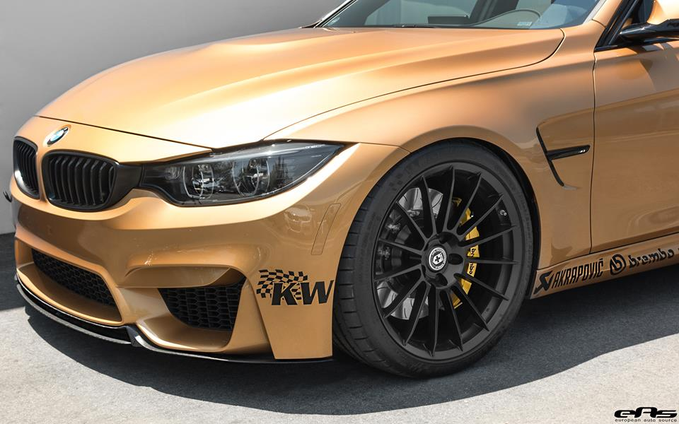 Sunburst Gold BMW M3 by EAS  (10)