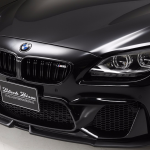 BMW 6-Series Gran Coupe with Black Bison Kit  (1)