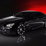 BMW 6-Series Gran Coupe with Black Bison Kit  (12)