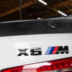 BMW X6 M with Significant Tweaks from EAS (30)