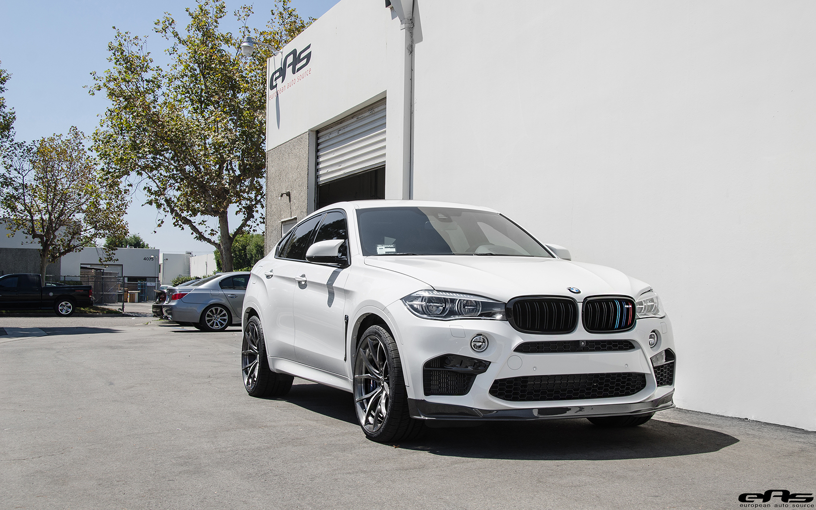 BMW X6 M with Significant Tweaks from EAS (47)