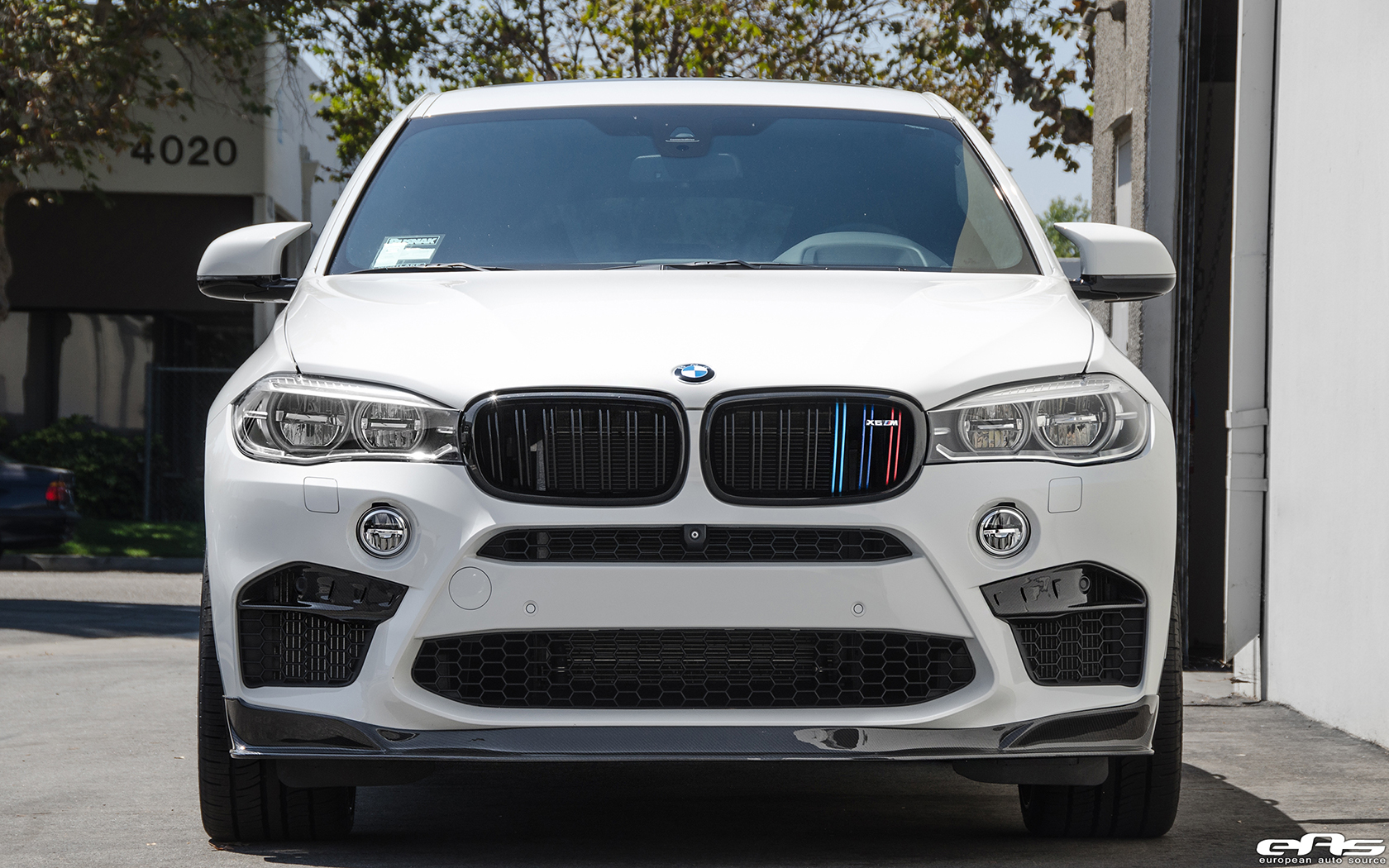 BMW X6 M with Significant Tweaks from EAS (49)