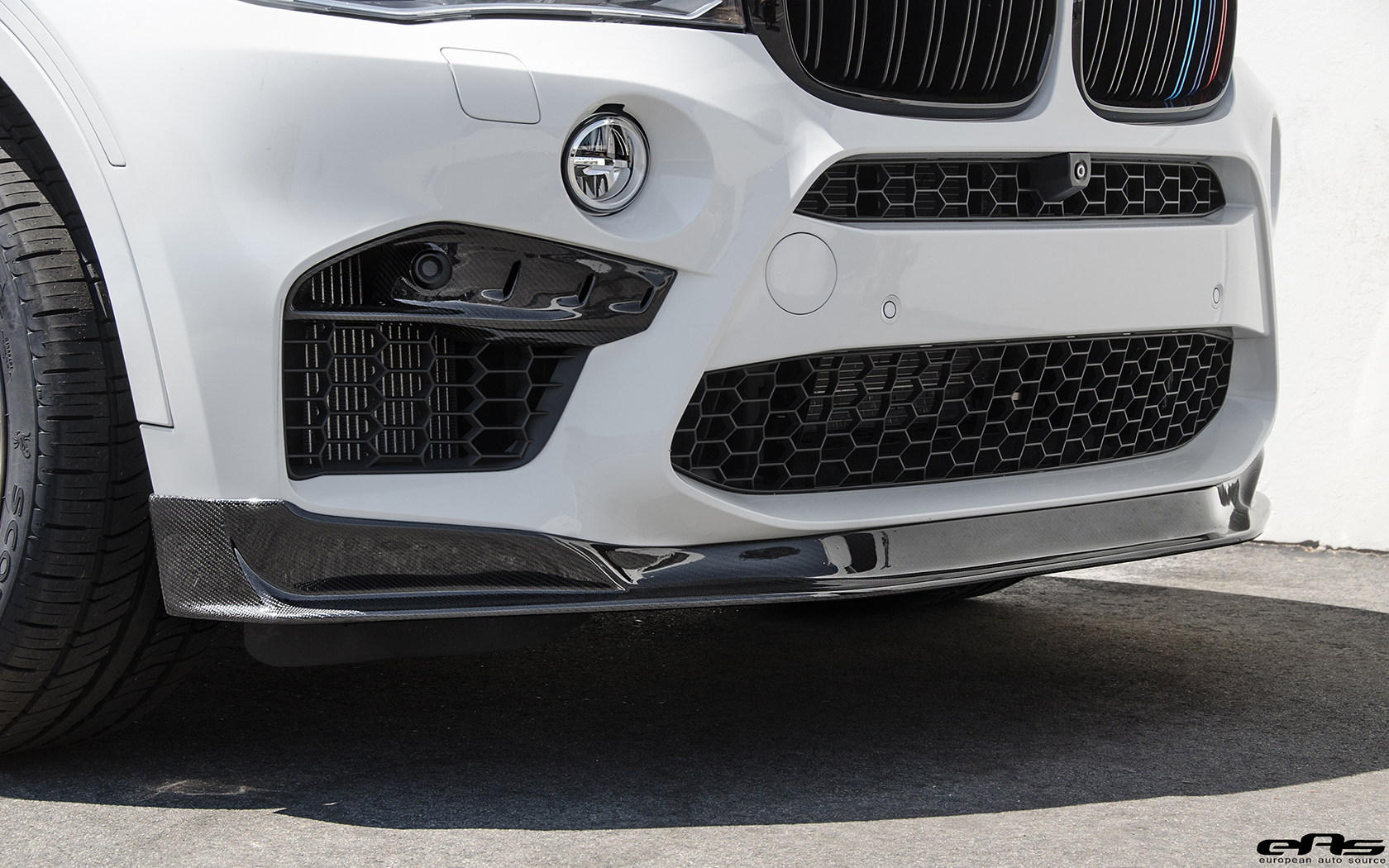 BMW X6 M with Significant Tweaks from EAS (51)