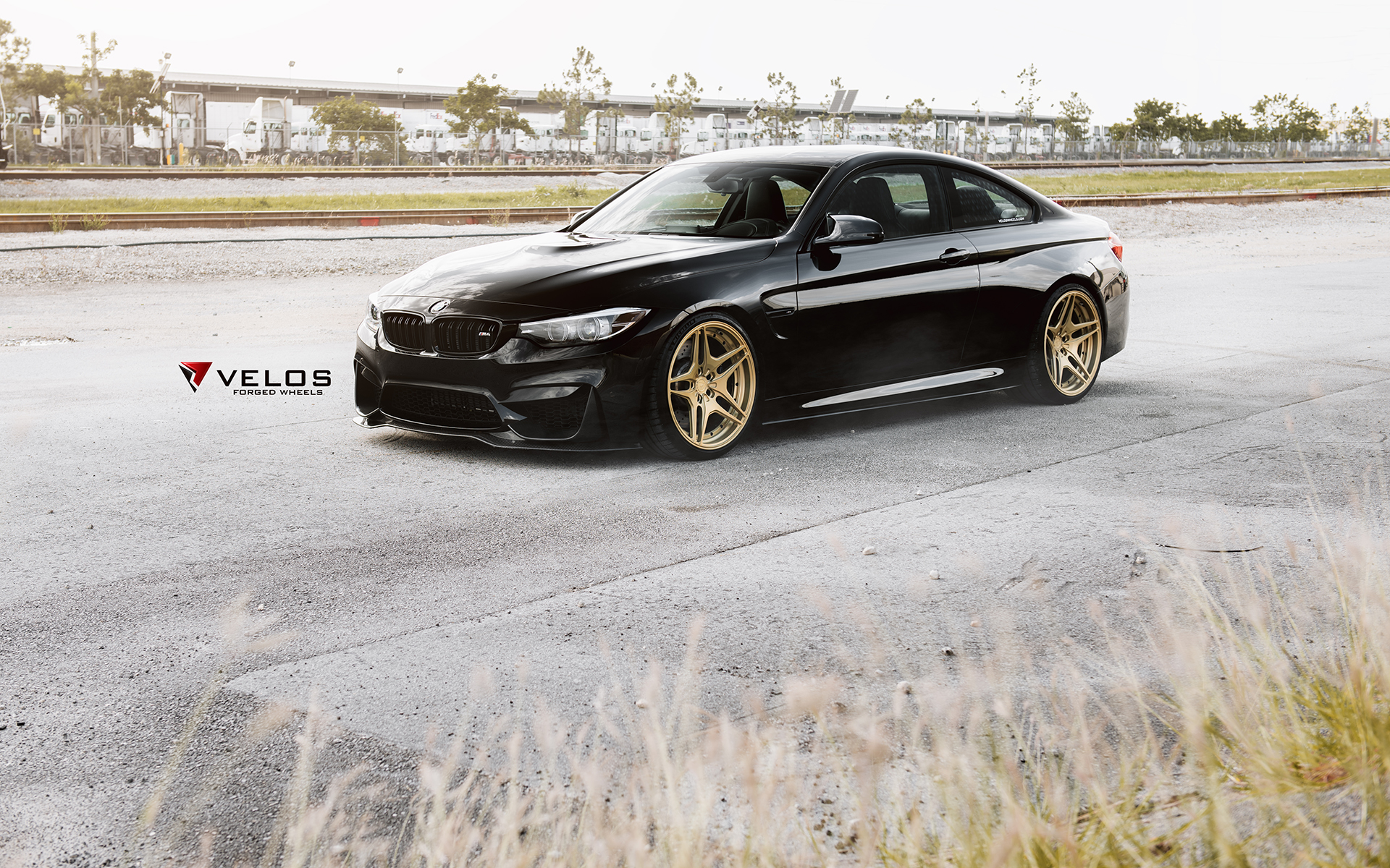 BMW M4 with Velos Designwerks Wheels