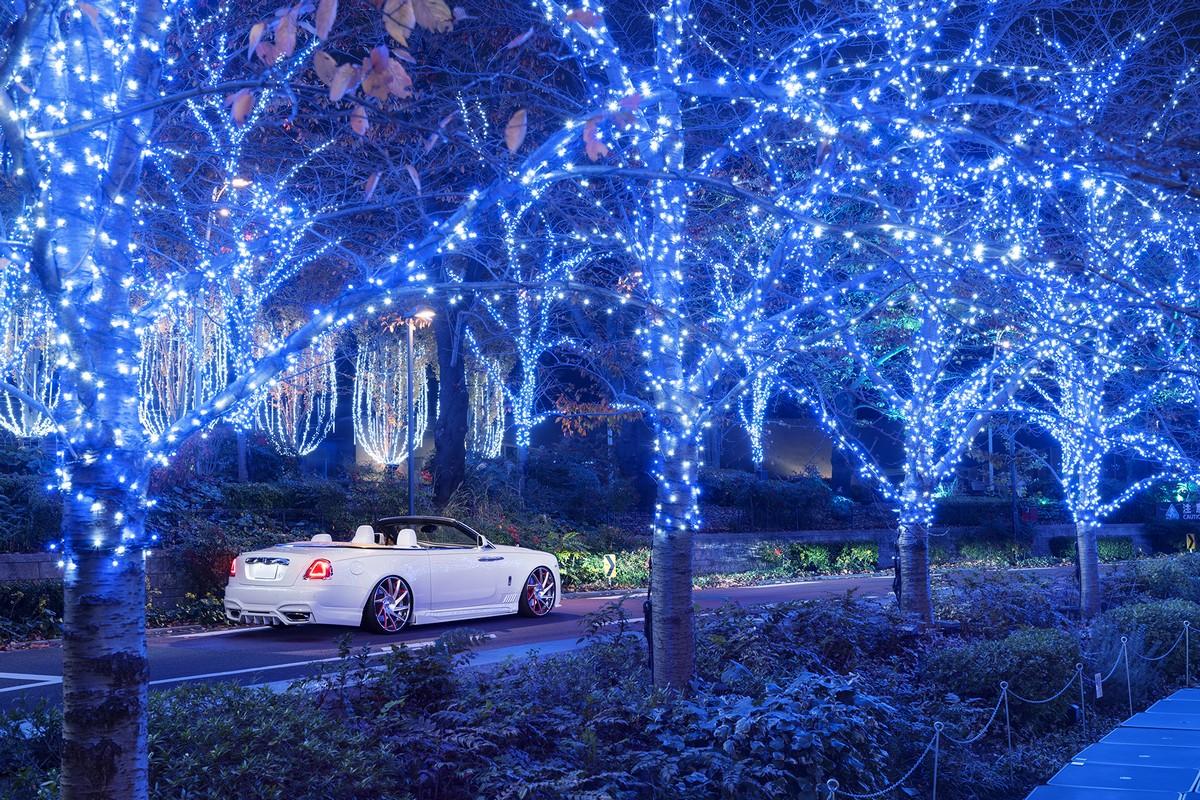 Rolls Royce Dawn by Wald International (4)