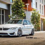 F80 BMW M3 by TAG Motorsports (9)