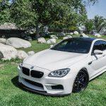F14 BMW M6 Gran Coupe (3)